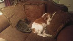 Murph and Lucinda